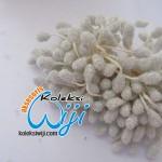 Putik bunga kaca putih,PBK-1557